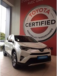 RAV 4 Hybrid CVT Business Plus + Safety Sense